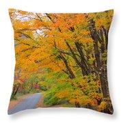 Rural Road Throw Pillow