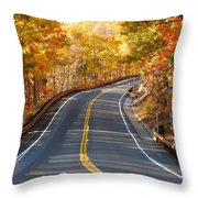 Rural Road Running Along The Maple Trees In Autumn 2 Throw Pillow