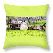 Rural Ruin Throw Pillow