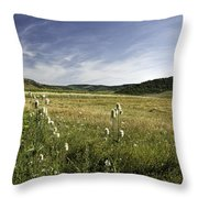 Rural Scenic Landscape Throw Pillow