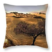 Rural Spain View Throw Pillow