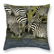 Rush To Water Throw Pillow