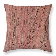 Rushes Throw Pillow by Eikoni Images