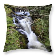 Rushing Montgomery Brook Throw Pillow