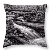 Rushing Stream - Bw Throw Pillow