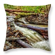 Rushing Stream Throw Pillow