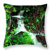 Rushing Stream El Yunque National Forest Mirror Image Throw Pillow
