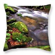 Rushing Stream Monongahela National Forest Throw Pillow
