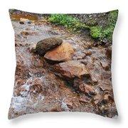 Rushing Waters 2 Throw Pillow