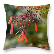 Russelia Aka Firecracker  Throw Pillow