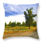 Russia539 Throw Pillow