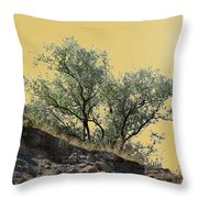 Russian Olive Throw Pillow