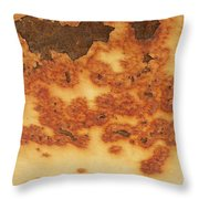 Rust 17 Throw Pillow