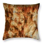 Rust 18 Throw Pillow