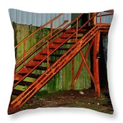 Rust And Mold Throw Pillow
