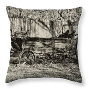 Rust Bucket Throw Pillow