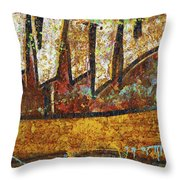 Rust Colors Throw Pillow by Carlos Caetano