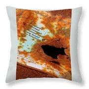 Rust Warning Photograph Throw Pillow