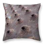 Rusted Pattern Throw Pillow