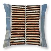 Rusted Shut Throw Pillow