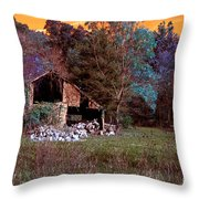 Rustic Barn In Disrepair False Color Infrared Throw Pillow