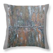 Rustic Barn Wood And Wire Throw Pillow