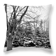 Rustic Chill Throw Pillow
