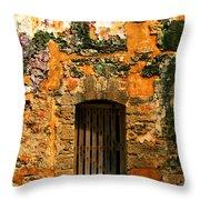 Rustic Fort Door Throw Pillow