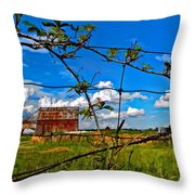Rustic Frame Paint Throw Pillow
