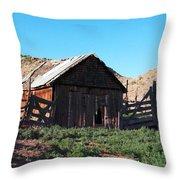 Rustic In Colorado Throw Pillow