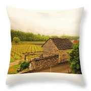 Rustic Italian Cottage Throw Pillow