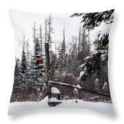 Rustic Property Marker Throw Pillow