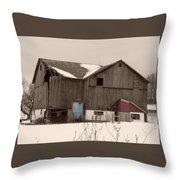 Rustic Ruins Throw Pillow