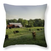 Rustic Serenity  Throw Pillow