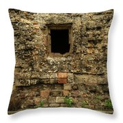 Rustic Wall Throw Pillow