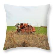 Rustic018 Throw Pillow