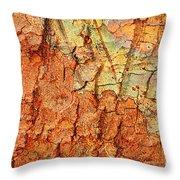 Rusty Bark Abstract Throw Pillow