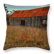 Rusty Barn Throw Pillow