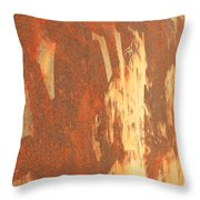 Rusty Drum #2 Throw Pillow