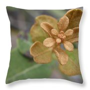 Rusty Lyonia Throw Pillow