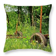 Rusty Object 2 Throw Pillow