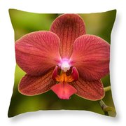 Rusty Orchid Throw Pillow
