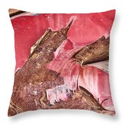 Rusty Red Brown Throw Pillow