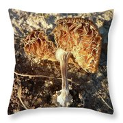 Rusty Ribbons Throw Pillow