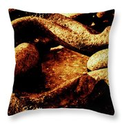 Rusty Shackle. Throw Pillow