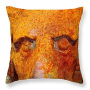 Rusty The Lion Throw Pillow