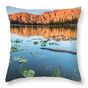 Ruth Lake Lilies Throw Pillow