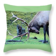 Rutting Bull Elk Throw Pillow