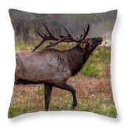 Rutting Bull Throw Pillow