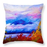 Rythmn Of The Arctic Throw Pillow